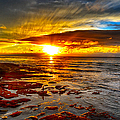 Sunset At Low Tide by Chuck Lapinsky