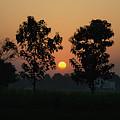 Sunset At Lumbini by Javier Sanchez de la vina