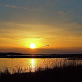 Sunset At Parker River National Wildlife Refuge by Peter Gray