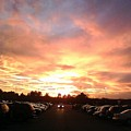 Sunset At Parking Lot by Wolfgang Schweizer