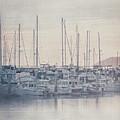 Sunset At The Marina by Teresa Wilson