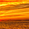 Sunset At The Ss Atlantus - Pano by Nick Zelinsky
