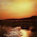 Sunset Bay  by Paul Tokarski