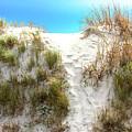 Sunset Beach Dune Path by John Rizzuto