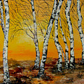 Sunset Birches by Inna Montano