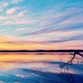 Sunset Bliss by Kelly Nowak