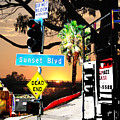 Sunset Blvd Meets Sunset by Maria Kobalyan
