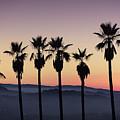 Sunset By La by Nathaniel Buzolic