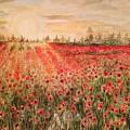 Sunset By The Poppy Fields by Vinaya Kini