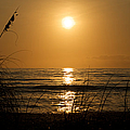 Sunset On Barefoot Beach by Cathy Fitzgerald