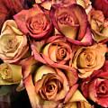 Sunset Colored Roses by Deborah Weinhart