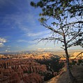 Sunset Colours Bryce Canyon 3 by Mo Barton