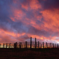 Sunset Corral by Paul Moore