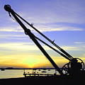 Sunset Crane by Andrew Ford