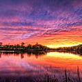 Sunset Culpeper Va by Alfredo Alegrett
