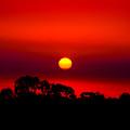 Sunset Dreaming by Az Jackson