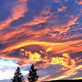 Sunset Extravaganza by Will Borden
