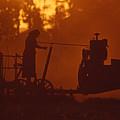 Sunset Female Amish Farmer by Blair Seitz