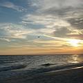 Sunset Flight by Inspired Arts