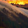 Sunset Fog by Harry Spitz