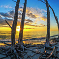 Sunset From Lovers Key, Florida by Vito Palmisano