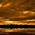 Sunset Gold by Dan Emberton