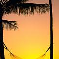 Sunset Hammock by Dana Edmunds - Printscapes