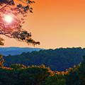 Sunset Hills by Mark Miller