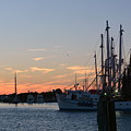 Sunset In Beaufort by Dan Williams