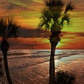 Sunset In Florida by Athala Carole Bruckner