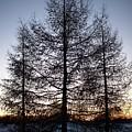 Sunset In Kemi by Jouko Lehto