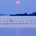 Sunset In Laguna by Marco Missiaja
