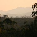 Sunset In Limpopo by Andrew Parker