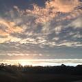 Sunset In November  by Brandon Miller