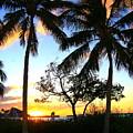 Sunset In Paradise by Joy Hiott