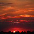 Sunset In The City by Mariola Bitner