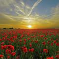 Sunset by Ivan Angelovski