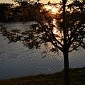 Sunset Lake by Josiane Smith
