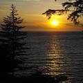Sunset by Marianne Mason