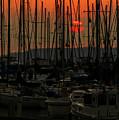 Sunset Marina by Jon Reiswig