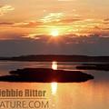 Sunset Marsh 7465 by Captain Debbie Ritter