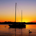 Sunset Off Bribie Island by Susan Vineyard