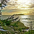 Sunset Off Vancouver Island by Sterling Haidt