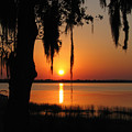 Sunset On Lake Minneola by Peg Urban