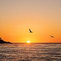 Sunset On Monterey Beach by Scott Pellegrin