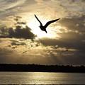 Sunset On Sanibel by Jim Bennight
