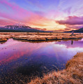 Sunset On Sparks Marsh by S A Littau