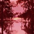 Sunset On The Bayou Atchafalaya Basin Louisiana by Dave Welling