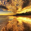 Sunset On The Beach by Svetlana Sewell