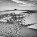 Sunset On The Dunes by Carol Fox Henrichs